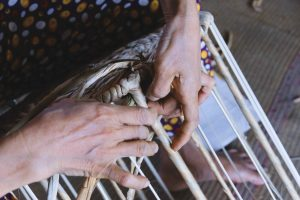 Viet Trang Craft and HAND/EYE
